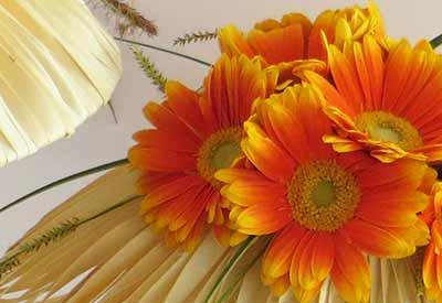 bloemschikken cursus zomer Gistel Ardooie Sijsele Brugge